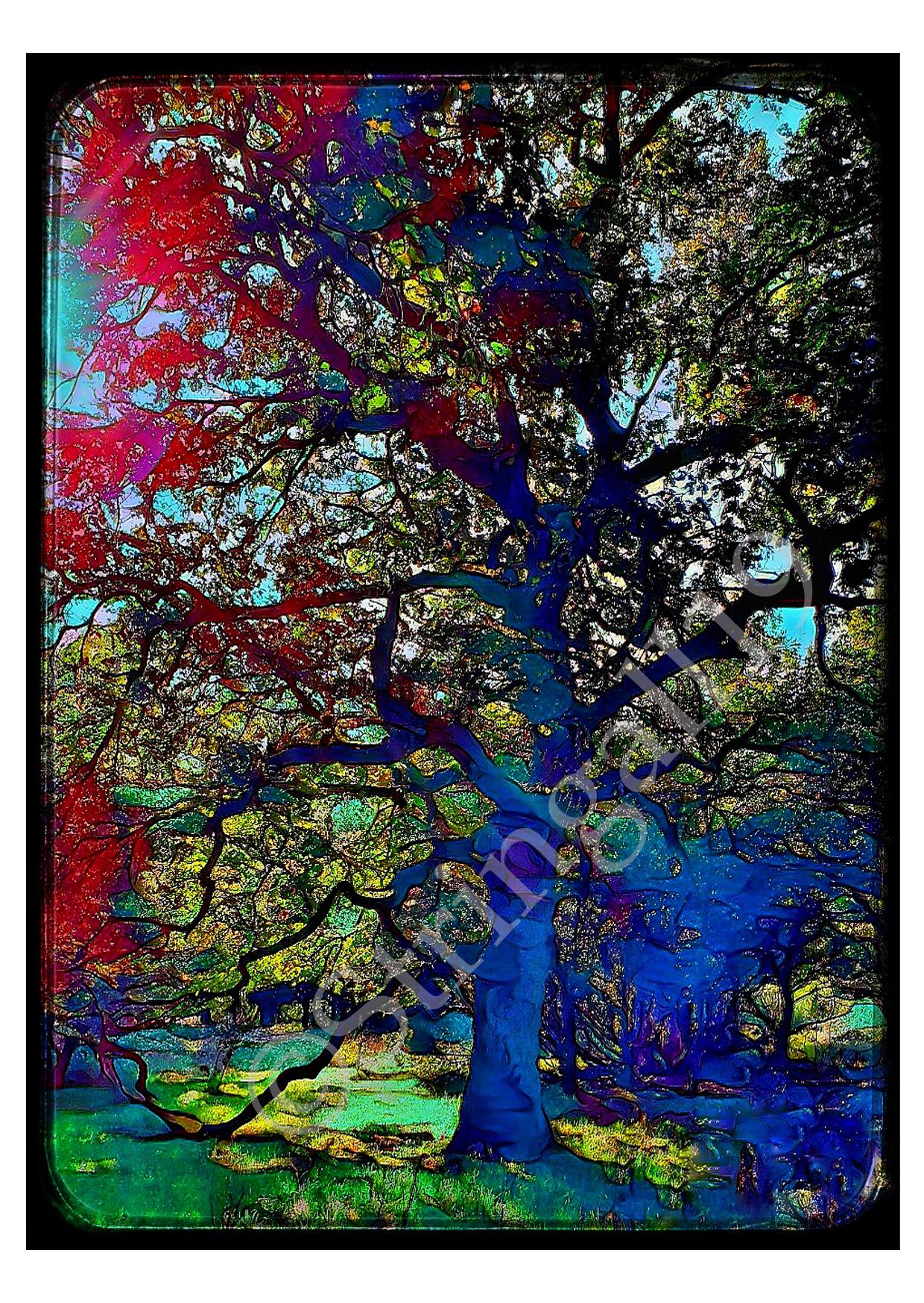 CARDS_treepsychedilic2